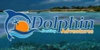 DolphinDestiny_Logo2x1