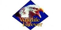WildlifeForever_Logo2x1